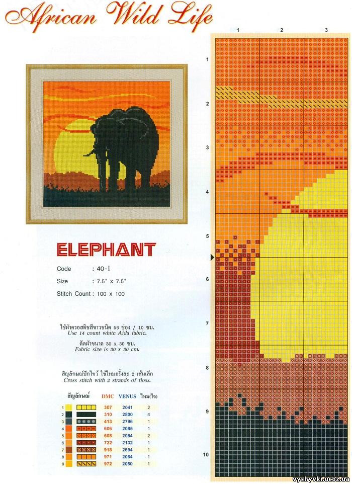 Закат со слоном