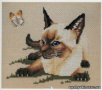 Схема вышивка крестом сиамская кошка